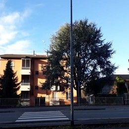 Weekend di furti nel Canturino  Colpi nelle case a Figino e Alzate