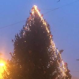 Rovello, i vandali spengono l'albero   «Un dispetto ai bambini e al paese»