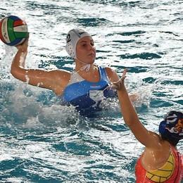Rane Rosa, ecco il girone Con Trieste e la Sardegna