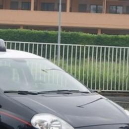 Ruba a Rovellasca, i vicini lo vedono  Il ladro arrestato dai carabinieri