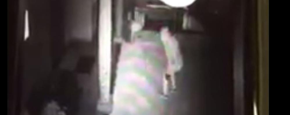Scatta il videoallarme a Inverigo  Il proprietario vede i ladri in diretta   Qui il filmato della fuga