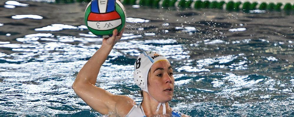 Piegata anche la quotata Trieste  Rane Rosa Como Nuoto lanciate