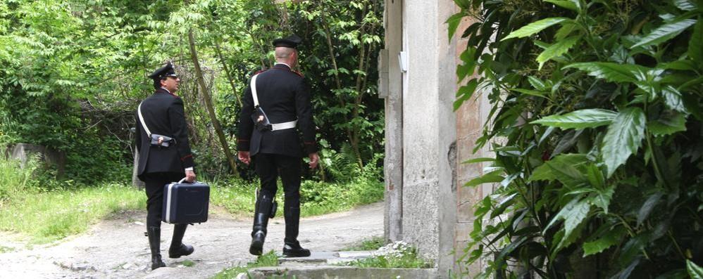 CADAVERE TROVATO NEL BOSCO  MISTERO A LOCATE VARESINO