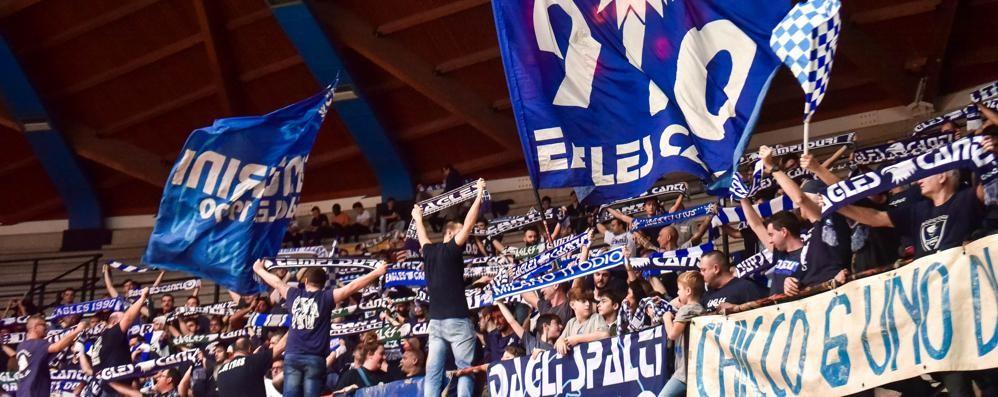 Cantù-Torino, i tifosi rispondono  Si va verso il record stagionale
