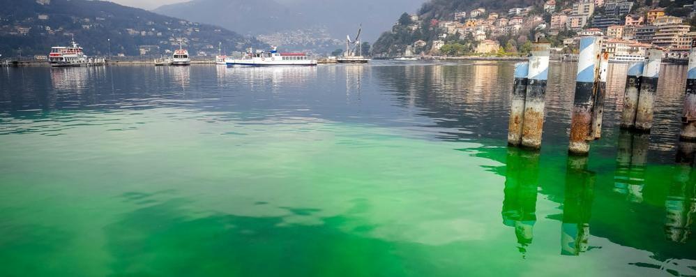 Prove per le fognature  E il lago si è tinto di verde