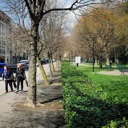 Viale Varese, più auto meno verde  «Pochi posti non risolvono i guai»
