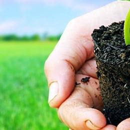 La ricchezza dei Parchi  Lezioni di eco sostenibilità