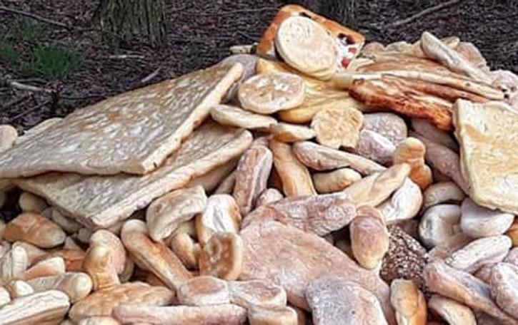 Rovello porro, montagna di pane  nel bosco che spreco