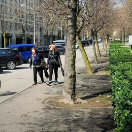 Como, parcheggi in viale Varese  C'è un nuovo progetto  E costa solo mezzo milione