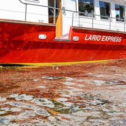 Migliora la qualità delle acque del lago  Il problema: «Troppe microplastiche»