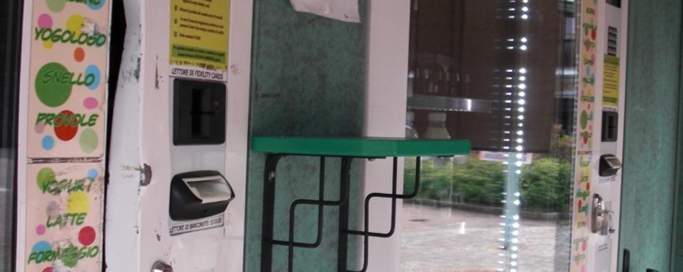 Ladri a Uggiate Trevano  Forzata la casetta del latte