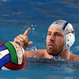 Como Nuoto a Bologna  Emiliani favoriti, sarà dura