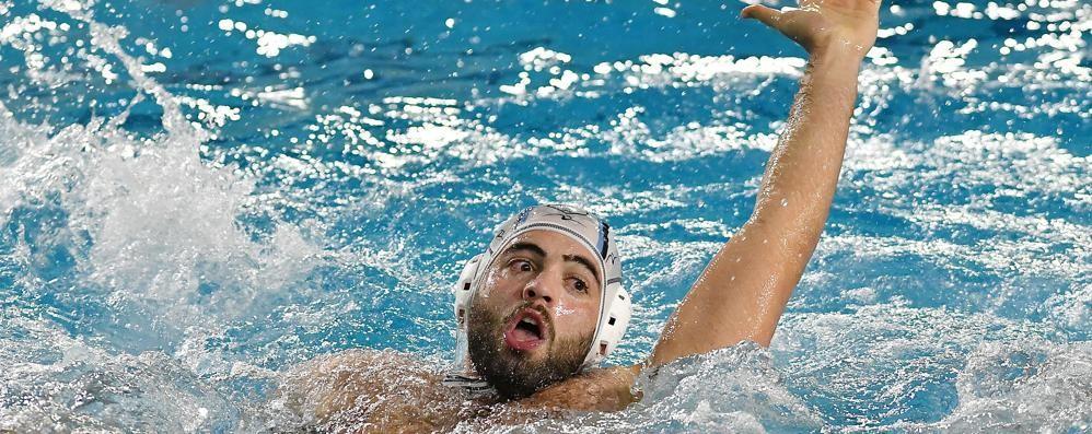 A Bologna non si passa Como Nuoto sconfitta 10-5
