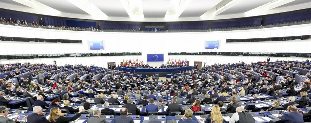 Pd, da M5S falsità su fondi Ue  per reddito cittadinanza