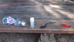 «Fumano crack al parco»  Allarme droga a Lomazzo