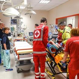 Lite, orecchio strappato a morsi  Salvato all'ospedale Sant'Anna