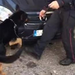 Arrestato per spaccio di droga  Nuova ordinanza in carcere