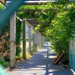 Villa Olmo, braccio di ferro sul lido  Il Comune: «Ora ridateci le chiavi  o entreremo con la forza»