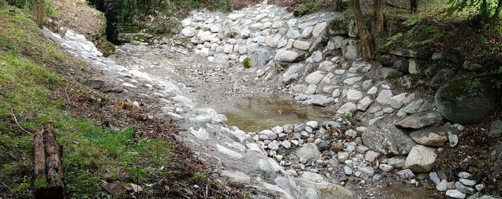 Torrente Bova, lavori e polemiche  «Meglio asfaltare le strade di Erba»