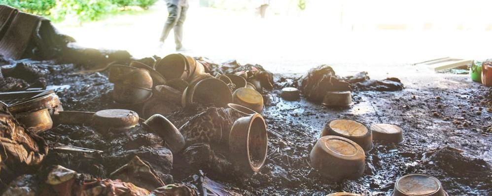 Valbasca, incendio al canile Quattro cani morti nel rogo (video)