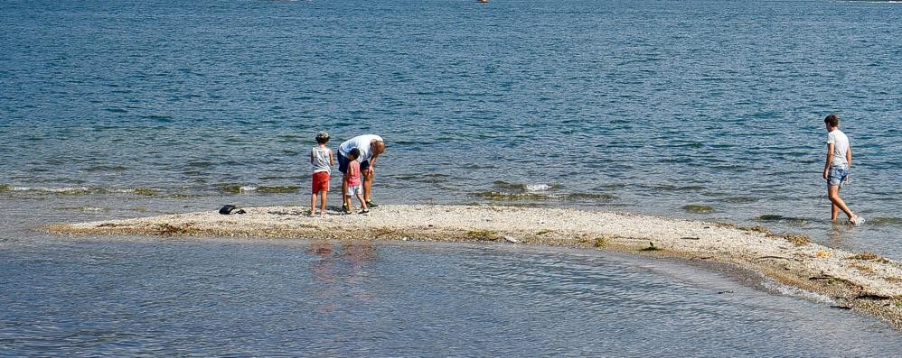 Livello del lago troppo basso  Coldiretti lancia l'allarme