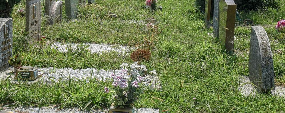 Como, cimiteri abbandonati  Due gare deserte, nessuno interviene
