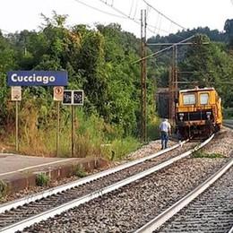 Passeggia con il cane sui binari  Treno bloccato a Cucciago