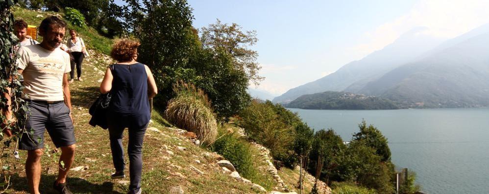 Musso, inaugurato il Giardino del Merlo  Bellezza mozzafiato tra natura e lago