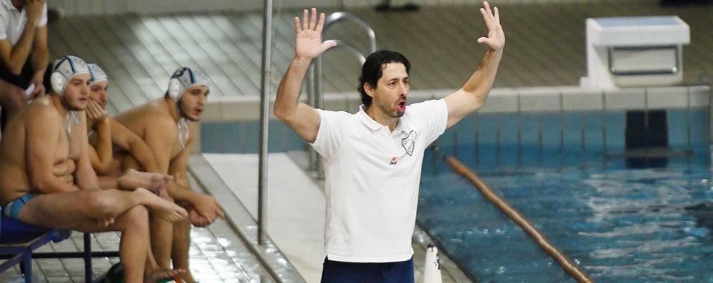 La Como Nuoto cambia pelle per il secondo anno in A2