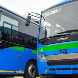 Bus, Asf assume 25 autisti Contratto a tempo determinato