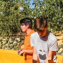 Zucche da record  Cinquemila a Rovenna  «Grazie ai volontari»