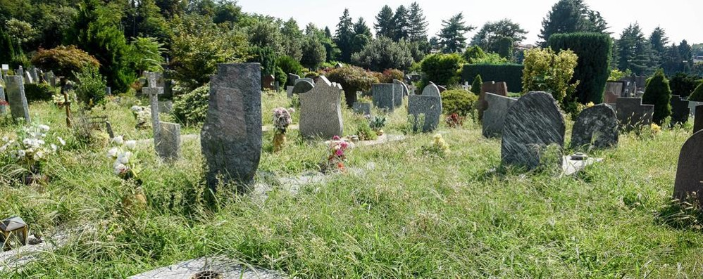 Como, scandalo cimiteri  Ecco com'è la situazione - Video