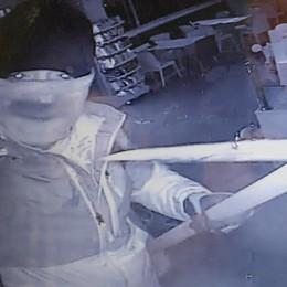 Orsenigo, spaccata al bar  I ladri ripresi dalle telecamere