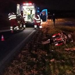 Cagno, cade sulla Provinciale  Gravissimo motociclista