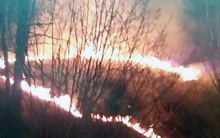 Incendio in una serra  Vigili del fuoco a Domaso