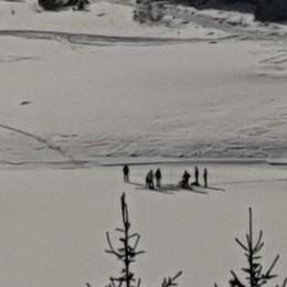 Mattia, ricerche nel lago ghiacciato