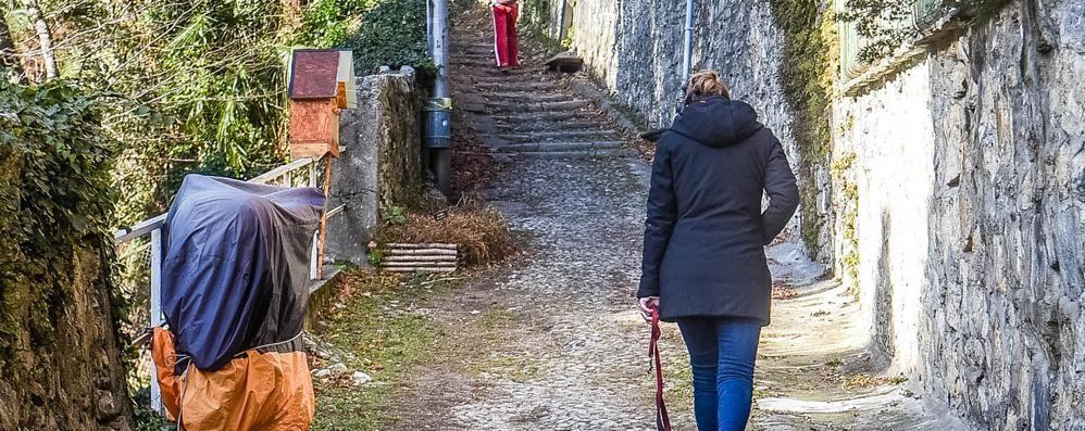 Como, si bucano sulla mulattiera  A San Donato è allarme droga
