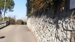 Via Betta, ladri nel giardino di casa   Inseguiti e messi in fuga a Cantù
