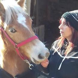 Breva, ecco la cavallina  salvata dal macello