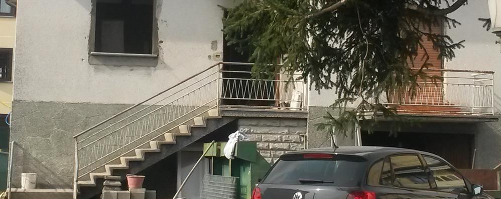 Olgiate, dieci cagnolini morti  Colpa della lampada sulla cuccia