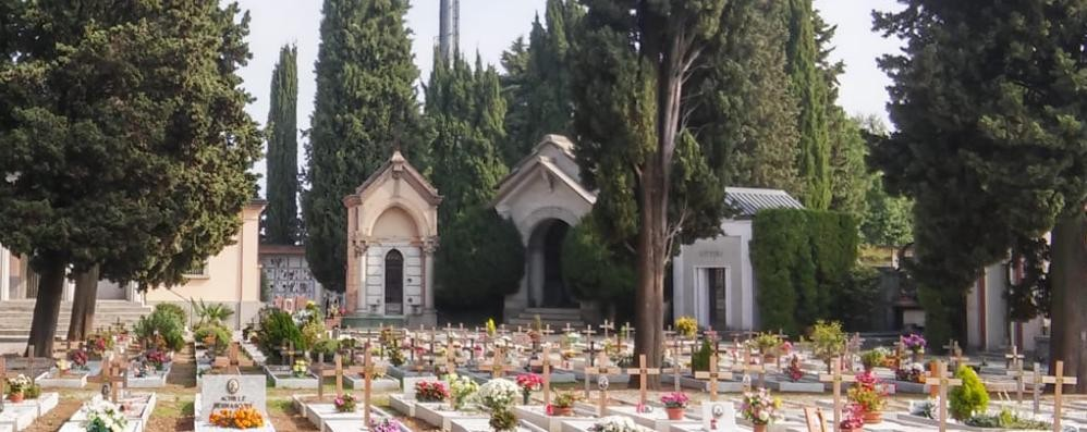 Olgiate, altro furto di fiori al cimitero  Intanto la telecamera non c'è più