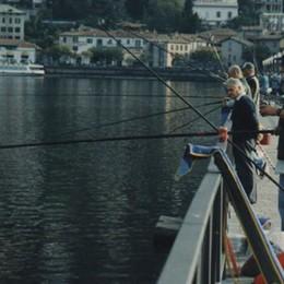«Vietare la pesca è assurdo»  Forza Italia contro la giunta