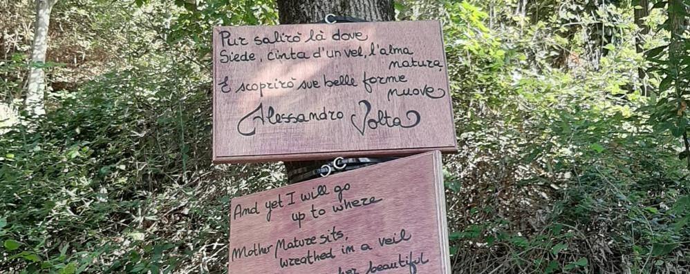 Fioriscono poesie sulla mulattiera  che sarà dedicata alla Merini