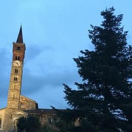 Cantù, via agli addobbi di Natale  Ecco il pino in piazza Garibaldi