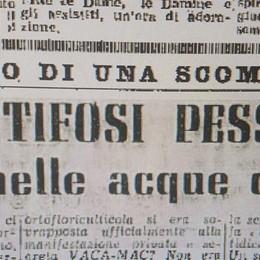La scommessa del 1952  I brontoloni nel lago VIDEO