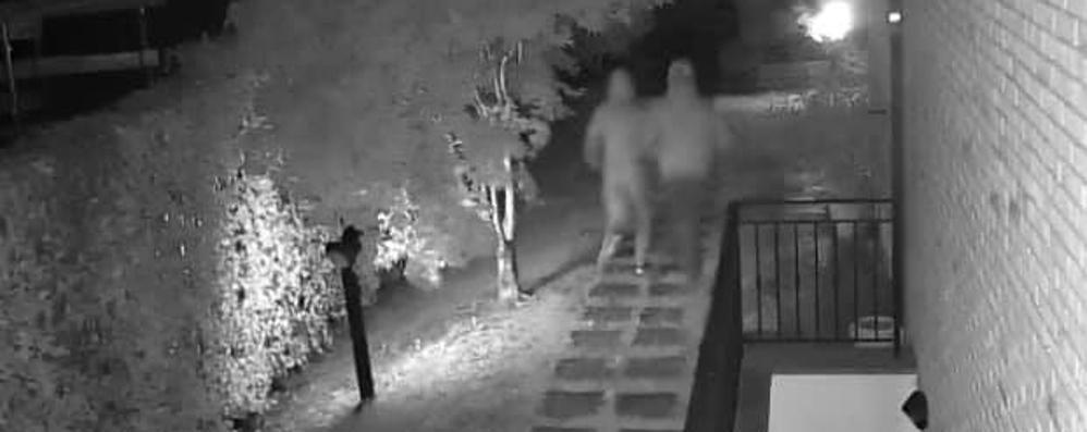 Tentano il furto in casa   I ladri in fuga filmati dal vicino