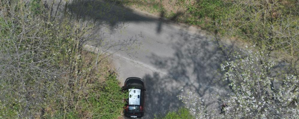 Sei arresti per spaccio nel Parco Pineta  I clienti arrivavano anche dalla Svizzera
