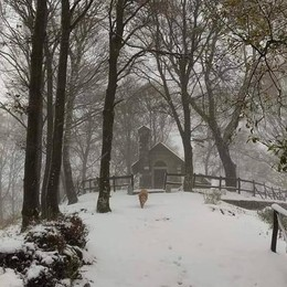 Valle Intelvi, 20 centimetri di neve  Altre nevicate nel fine settimana