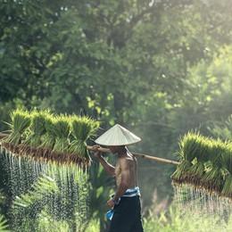 Da Ue un altro passo verso ripristino dazi a Cambogia