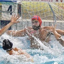 Como Nuoto, una trasferta continua  Oggi va a Torino per rialzare la testa